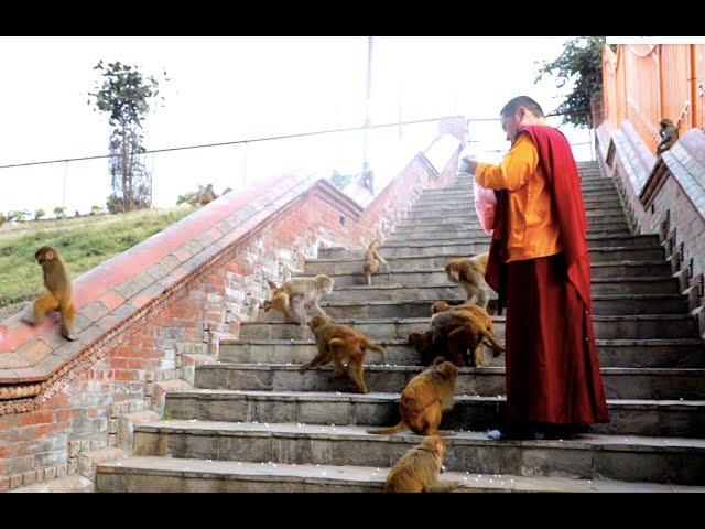 Buddha Bhajan Nepali