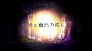 荒井良義雄 監修 榎木孝明 ナレーション 恋人のまなざし、日照、木々の...