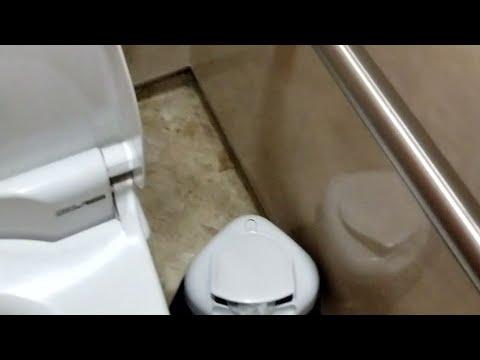 女子トイレ 生理