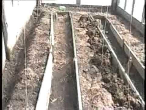 видео: Подготовка грядки под огурцы