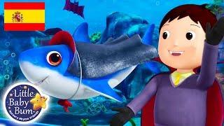 Tiburón Halloween | Bebé Tiburón | Nueva Canción! | Little Baby Bum | Canción de Halloween |
