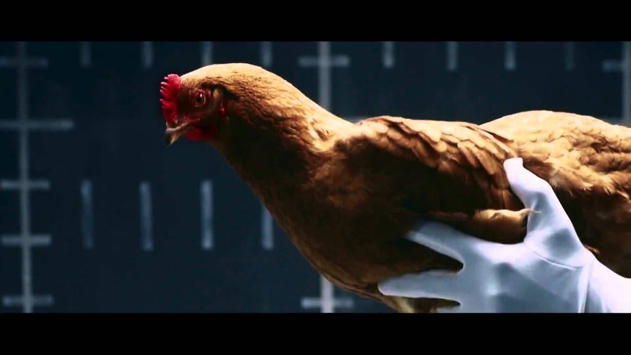 реклама с курицами мерседес