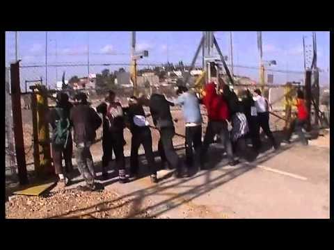 Palestine: Uprising against Occupation.