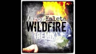 Aaron Kaleta-Wild Fire Remix (W/Lyrics/Free download)