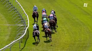 Vidéo de la course PMU PRIX NUBIENNE