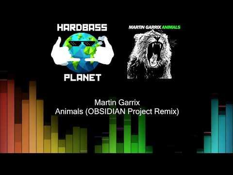 Martin Garrix  Animals OBSIDIAN Project Remix HBP Release