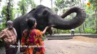Kerala Holidays & Tourism, God