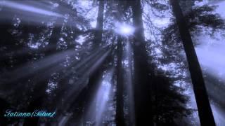 VIS (Mihai Eminescu) - recita Adrian Pintea