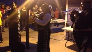 Mariachi Camino Azul de San Antonio-- Los Laureles