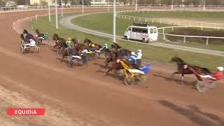 Vidéo de la course PMU PRIX BAR PMU DES AMIS DE REIMS