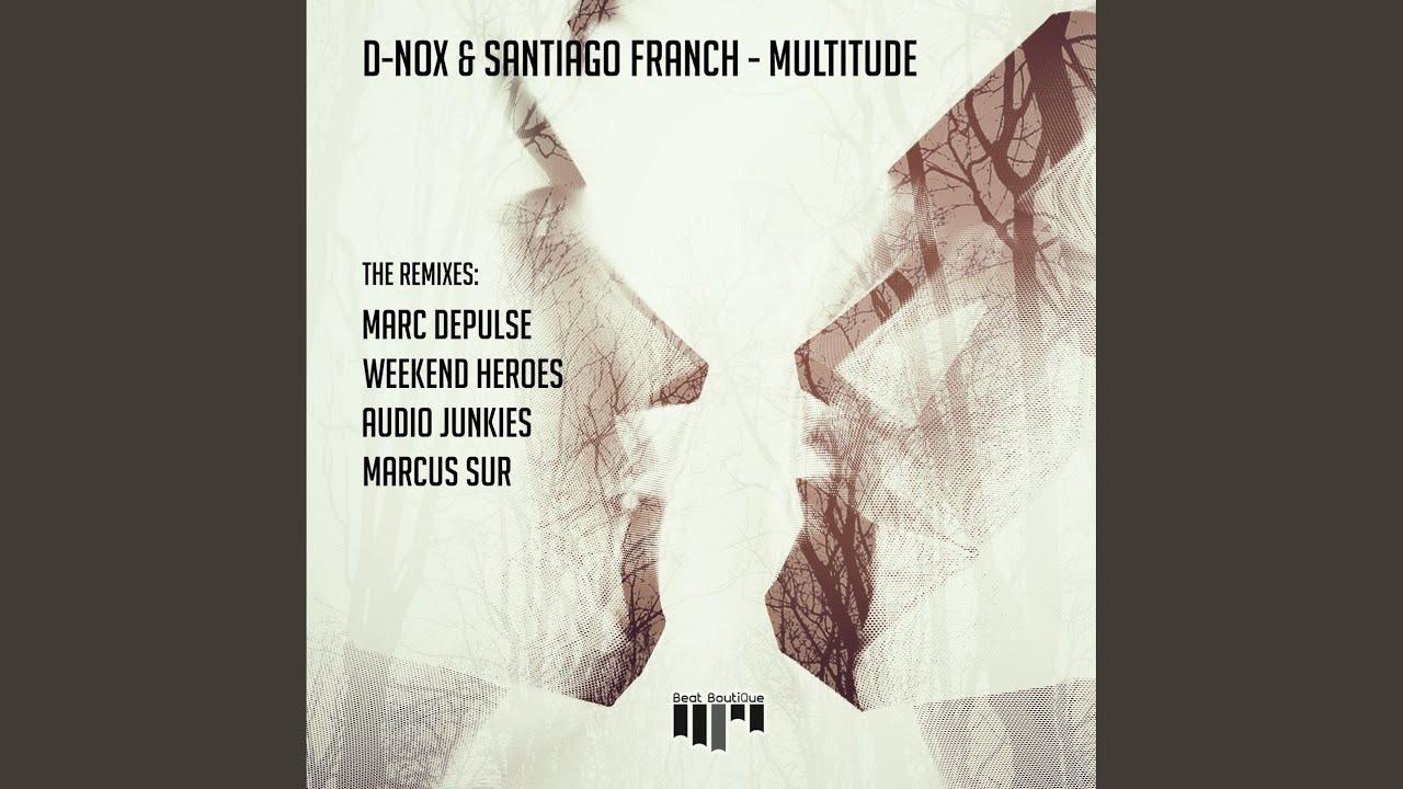 Download Multitude (Audio Junkies Remix)