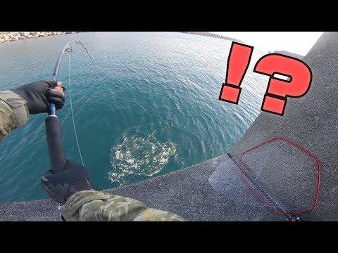 【奇跡】釣り開始1分で記録更新級の大物を釣り上げてしまうwww