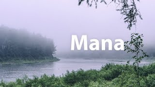 Туманная манна