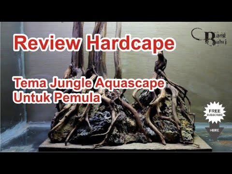 review-hardscape-jungle-style-aquascape-|-nano-tank