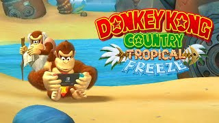 Top 10 Songs in Donkey Kong Country Tropical Freeze. ᴴᴰ
