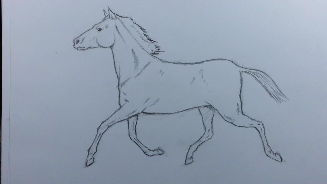 كيف أرسم حصان بطريقة بسيطة Youtube