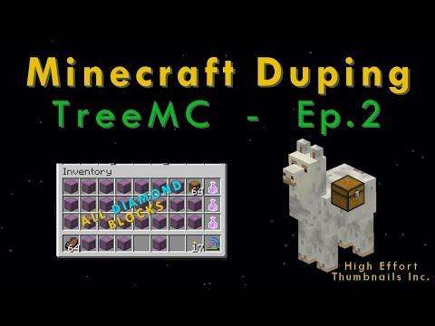 We Shut Down A Pay-To-Win Minecraft Server (Duping On TreeMC - Episode 2)
