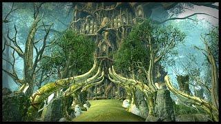 Amazing Wood Elf Forest Siege - Custom Map Battle | Warhammer Total War Gameplay