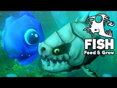 feed and grow fish gameplay german der hrteste fisch aller zeiten - Hai Krperkissen Das Dich Isst