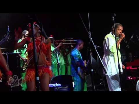 Femi Kuti - Africa for Africa (Live in Sydney) | Moshcam