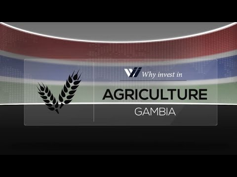 Agriculture  Gambia - Why invest in 2015
