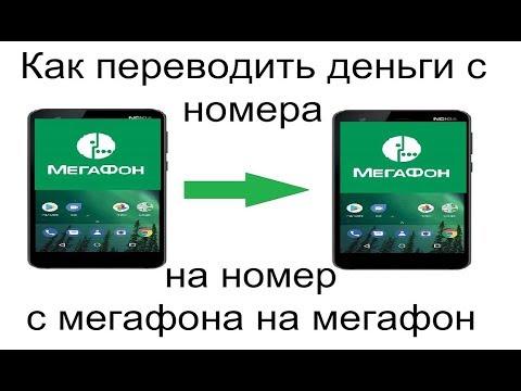 Как переводить деньги с номера на номер с мегафона на мегафон