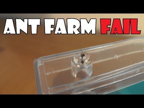 Ant Farm FAIL