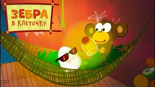 Зебра в клеточку 🦓 Колыбельная 🐵💡 Сборник мультфильмов 🌴 Все серии подряд | Мультики