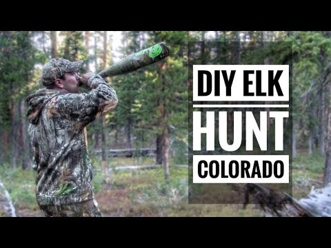 DIY PUBLIC LAND Elk Hunt Colorado S9 #37