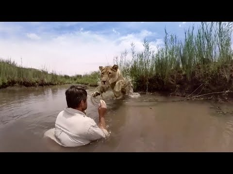 GoPro VR: For the Love of Lions