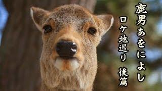 前回に引き続き、鹿男あをによしロケ地巡りの後篇です。 奈良の街中、古...