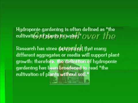 Hydroponic Gardener Explains - YouTube