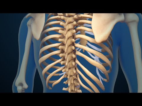 Back Surgery | Spinal Fusion | Nucleus Health