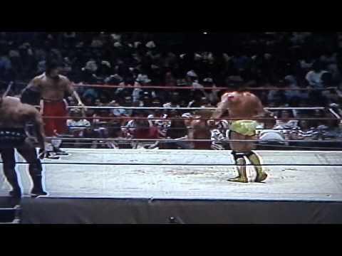 Macho Man Randy Savage & Lanny Poffo VS The Rock & Roll Express
