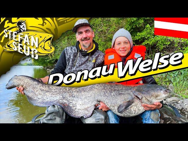 ABENTEUER Donau WELSE   WELSANGELN in Österreich   Waller-Workshop