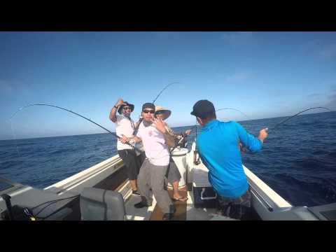 San Diego Yellow Fin Tuna Fishing August 16 2015 Youtube