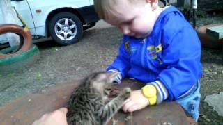 Никита и котёнок