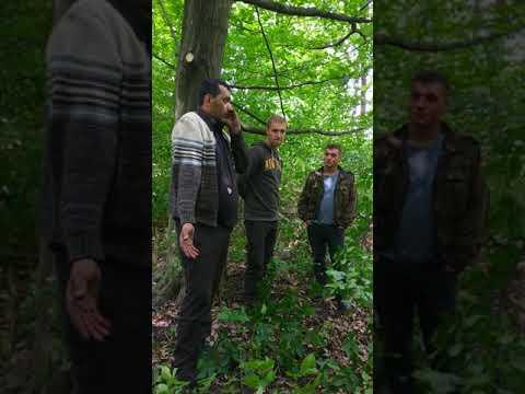 Ліс біля Калинівського арсеналу_2