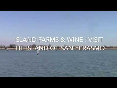 Island Farms & Wine: A Visit to the Island of Sant'Erasmo