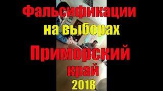 Фальсификации на выборах в Приморье. Зюганов требует от Путина вмешаться! Записки горожанина #152