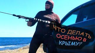 Подводная охота Грибы Беляус Металлокоп Черноморнефтегаз Чем заняться осенью в Крыму