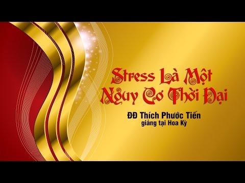 Stress Là Một Nguy Cơ Thời Đại -Thích Phước Tiến giarng taji Mỹ (2014)