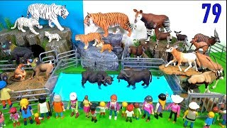 Learn Wild Animals and Zoo Animals Names Education Video Animal Toys For Kids Children 79
