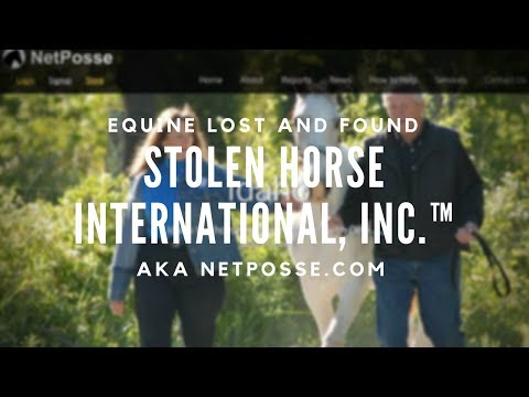 About Stolen Horse International - NetPosse.com
