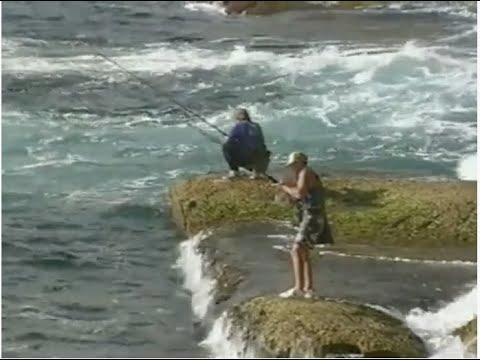 Sydney Rock Fishing