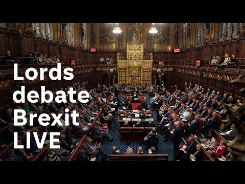 The House of Lords debates Brexit