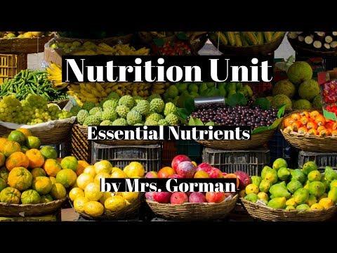 Nutrition Unit - Essential Nutrients