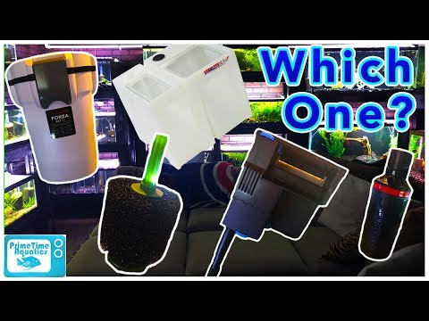 How To Choose The Right Filter For Your Aquarium!
