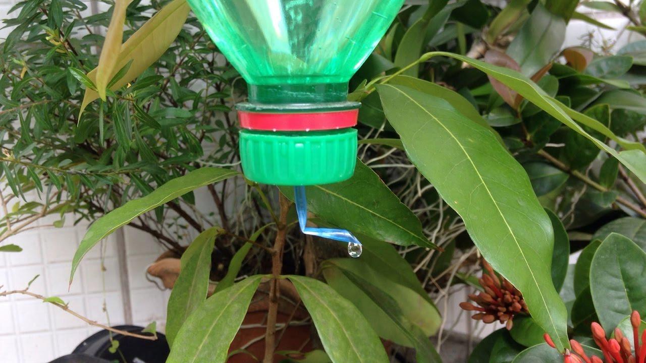 Como fazer um gotejador com garrafa pet o mais simples for Como criar caracoles de jardin