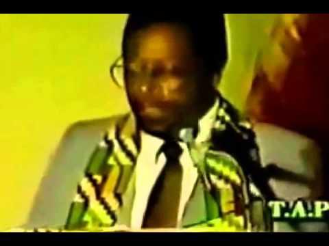 THE BLUEPRINT FOR BLACK POWER ~ Dr. Amos Wilson